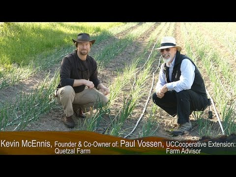 """UC Cooperative Extension - """"Farming In Drought Conditions"""" Series: Drip Irrigation Techniques"""