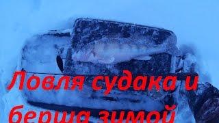 Рыбалка зимой на большую щуку в Красном Бору
