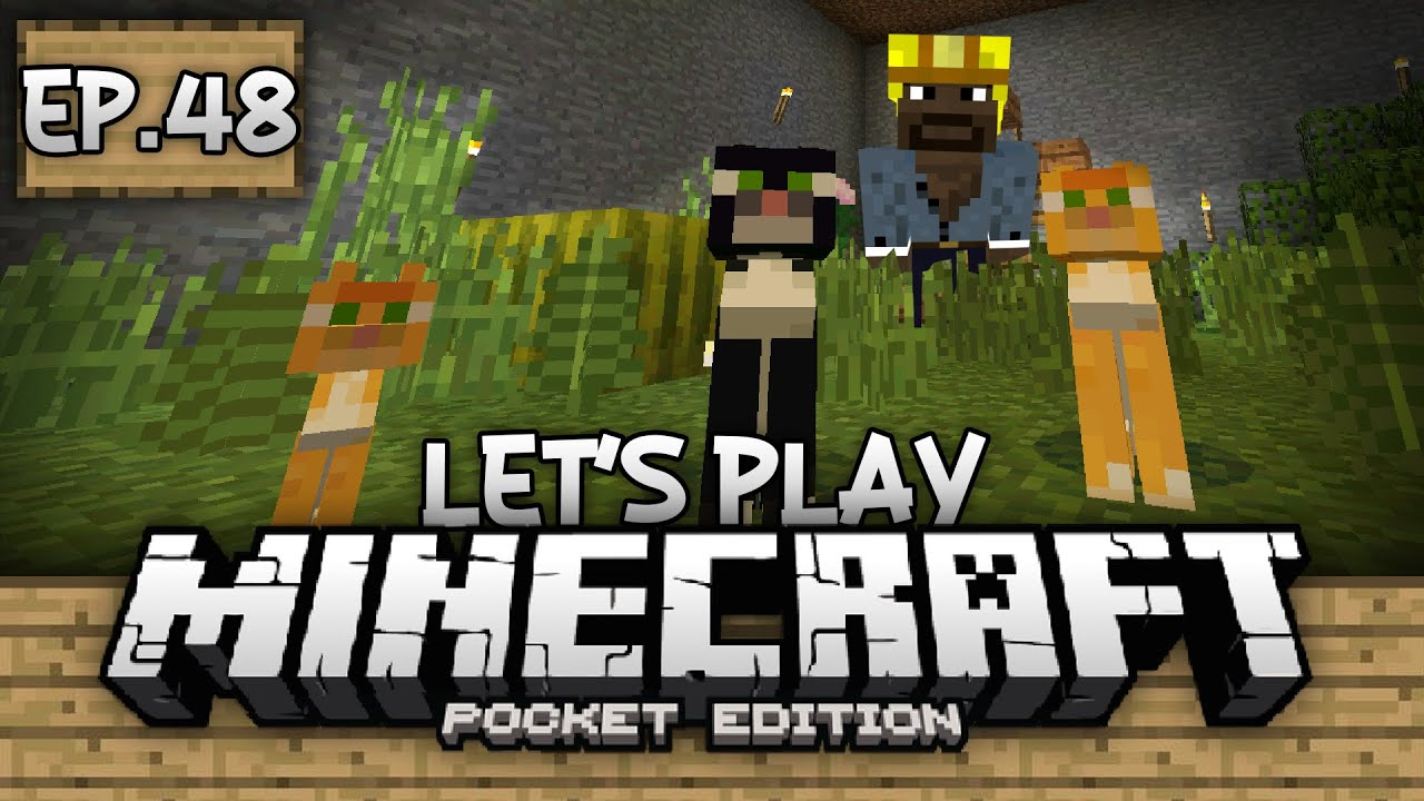 Survival Let's Play Ep. 48 - BREEDING KITTENS!!! - Minecraft PE (Pocket Edition) - YouTube