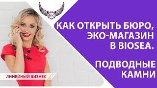 БЮРО и Эко магазин Biosea | Биоси. Подводные камни. Как открыть линейный бизнес