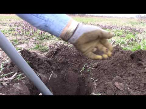 Central Indiana Metal Detecting in the Spring