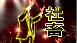 社畜 / Swish! ex SunSet Swish 【LIVE at ROCKTOWN】