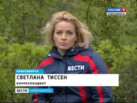 В Новосибирске начали распределять путевки в детск