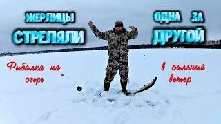 Жерлицы стреляли одна за другой Ловим хищника на озере