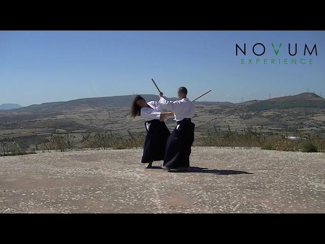10 Kumi jo jiū - Aikido Novum Experience - Kumi jo Juppon -  組み杖十 - 組み杖十本  - 合氣道 - 合氣杖