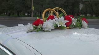 Свадебные Кольца в прокат на крышу автомобиля