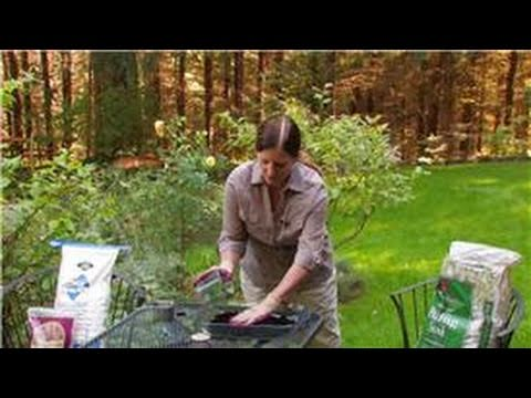 Gardening Preparation Tips : How To Sterilize A House Plant's Potting Soil