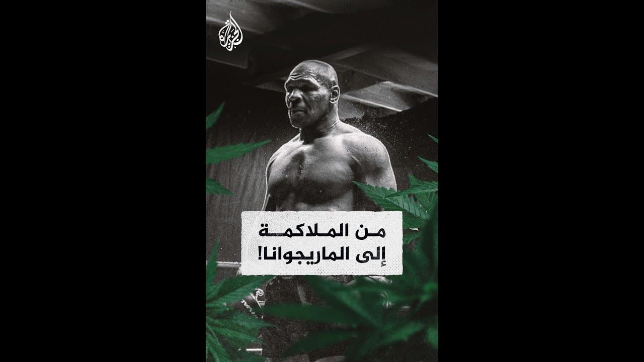 مايك تايسون.. من الملاكمة إلى زراعة الماريجوانا  - 02:57-2021 / 2 / 26