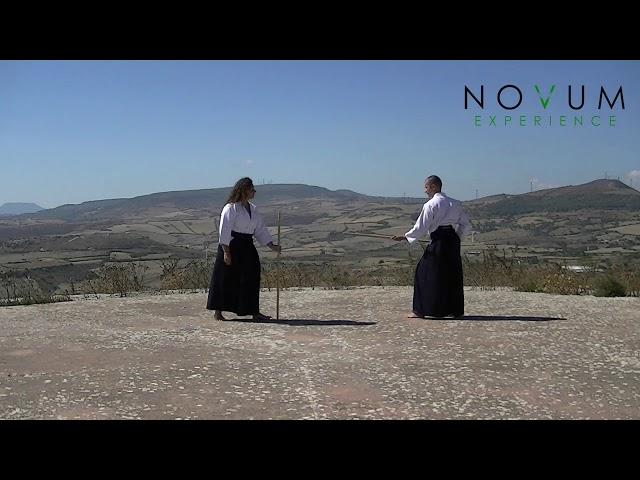02 Kumi jo ni - Aikido Novum Experience - Kumi jo Juppon -  組み杖二 - 組み杖十本  - 合氣道 - 合氣杖