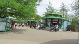 Brookfield Zoo Summer Timelapse - 815 Live Thumbnail