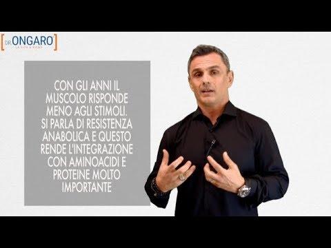 Amminoacidi e proteine: come ottimizzare il recupero muscolare   Filippo Ongaro