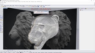 Clayoo 2.5 - Lion Head Tutorial