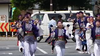 坂戸市役所連  2018 8 19坂戸夏よさこい 南口会場