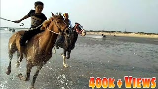 Horse racing in mandvi beach : Jangej & Badal