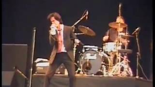 Nick Cave & The Bad Seeds - Reading Fest. 1990 - August 24, 1990