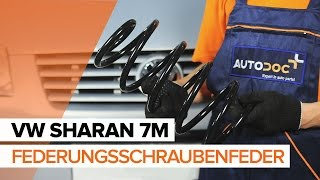 Installation Drehstromgenerator VW SHARAN: Video-Handbuch