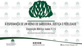 """Exposição Bíblica: Isaías 11.1-5 - """"A esperança de um reino de sabedoria, justiça e fidelidade."""""""