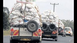 Unruly miraa transporters on NTSA's radar