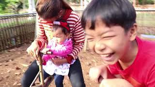 Pagoda Playground Feeding Fish Feeding Rabbits