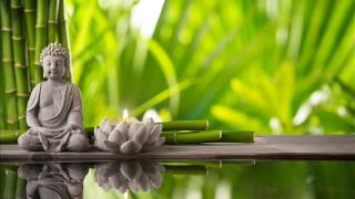 Spa Meditation Music Relax Mind Body  l Buddhist Meditation Inner Peace l Healing Music