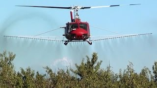 vuclip Bell UH-1 Huey spraying almond trees near Colusa, US