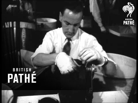 Pathe Newsreel Staff At Work (1953)