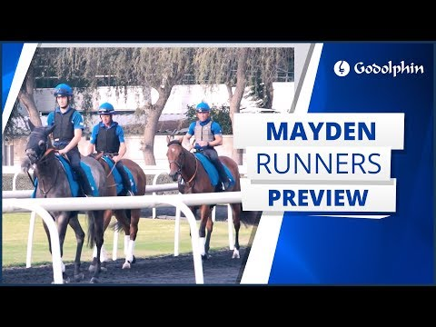 Saeed bin Suroor previews his Meydan runners