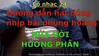 Nửa Đời Hương Phấn (Dạy hát đúng nhịp 12 câu Phụng hoàng - Bài hát mẫu dùng để tập đàn) - Cổ nhạc 24