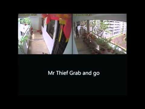 Man caught on camera stealing bird in cage from HDB corridor