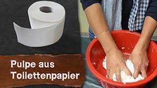 Pulpe (Pappmaché) aus Toilettenpapier selber machen