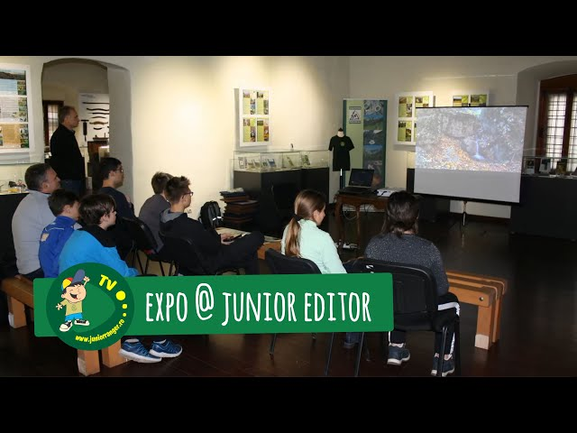 Expo @ Junior Editor