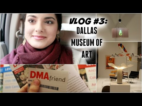 VLOG #3: Dallas Museum of Art January 2015 | AmyAliTV