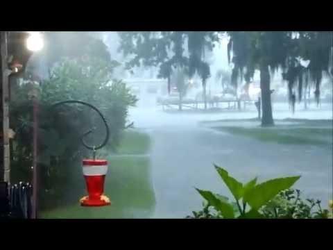 Houston Area Rain
