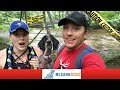 Will The Dogs Want To Cross This Bridge? Dog Vlogs Episode 9