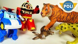 Животные. Поли Робокар. Поли Рой спасают машинки от ТИГРА Мультик про животных для детей. Игрушки ТВ