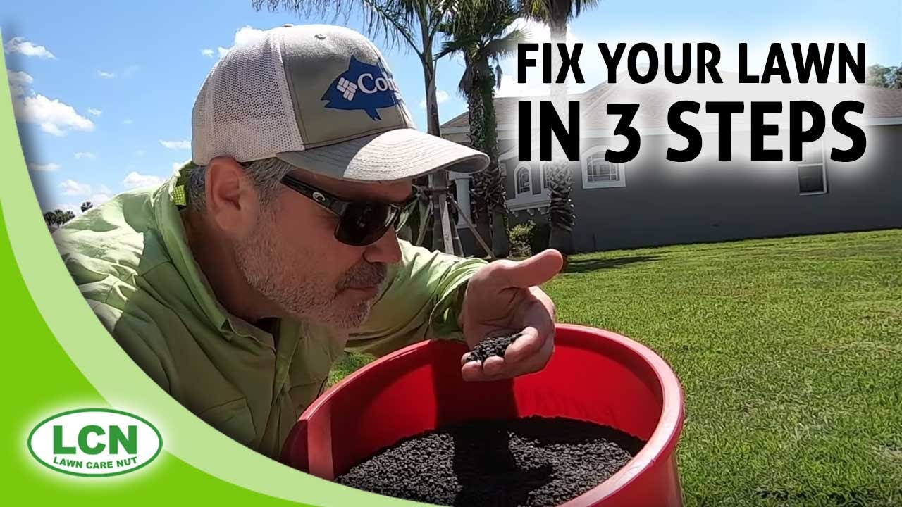 Lawn Care Tips for Beginners | Fix Your Lawn In 3 Steps from Allyn Hane, The Lawn Care Nut