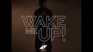 avicii   wake me up hardwell remix at tomorrowland 2013