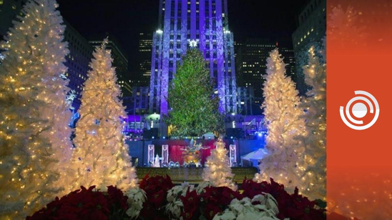 encienden el arbol de navidad de rockefeller center new york