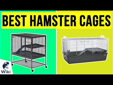6 Best Hamster Cages 2020