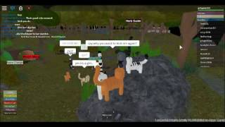 Roblox bullying over a name on a warrior cats game