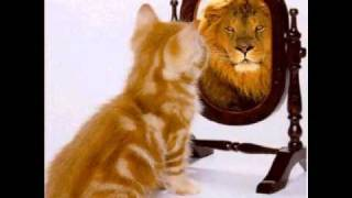 Program Your Mind for Success | Part 4 | The Mirror Technique