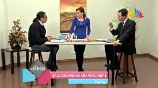 Tesis y Antítesis - Programa 67 - Salvaguardias arancelarias