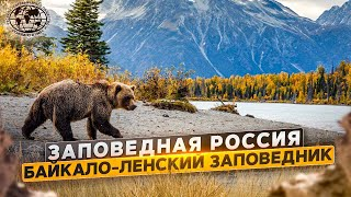 Заповедная Россия. Байкало-Ленский заповедник | @Русское географическое общество