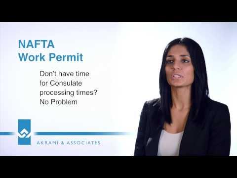 NAFTA Work Permit