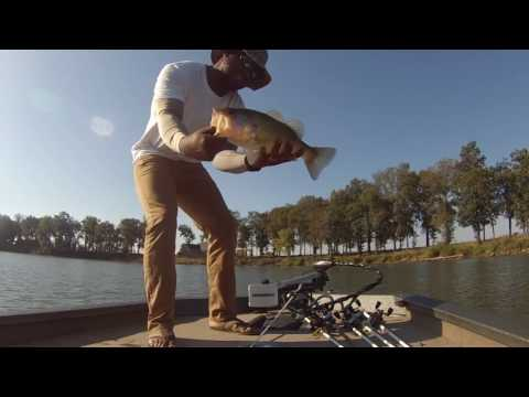 Bass fishing the Mississippi Delta