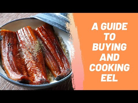 A Guide to Buying and Cooking Eel