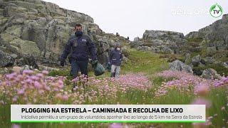 Movimento Estrela Viva promoveu ação de recolha de lixo no ponto mais alto da Serra da Estrela