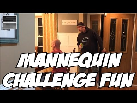 Mannequin Challenge Fun With the Fam