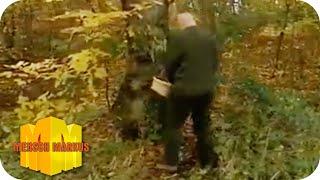 Toilettenbesuch im Wald