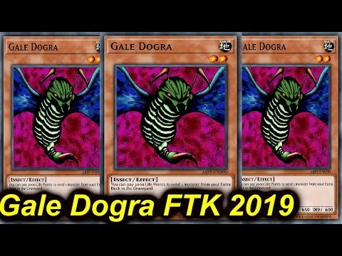 【YGOPRO】GALE DOGRA FTK  AUGUST 2019